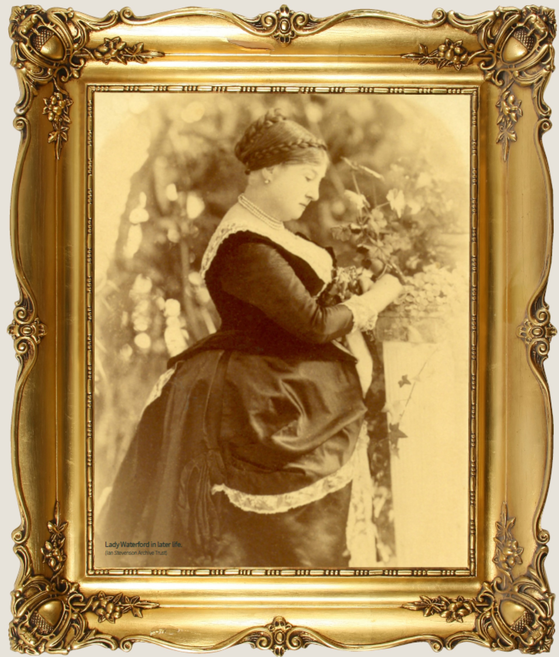 Sepia Portrait of Lady Waterford in long black dress with bustle and hair in a bun, in ornate gold frame